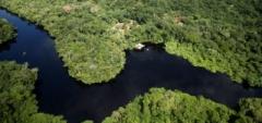 Cristalino Lodge, Southern Amazon