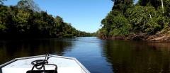 Rio Cristalino, Brazilian Amazon
